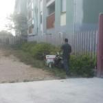 pulizia scuola Siotto Pintor