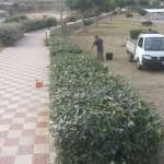 Parco di Balai